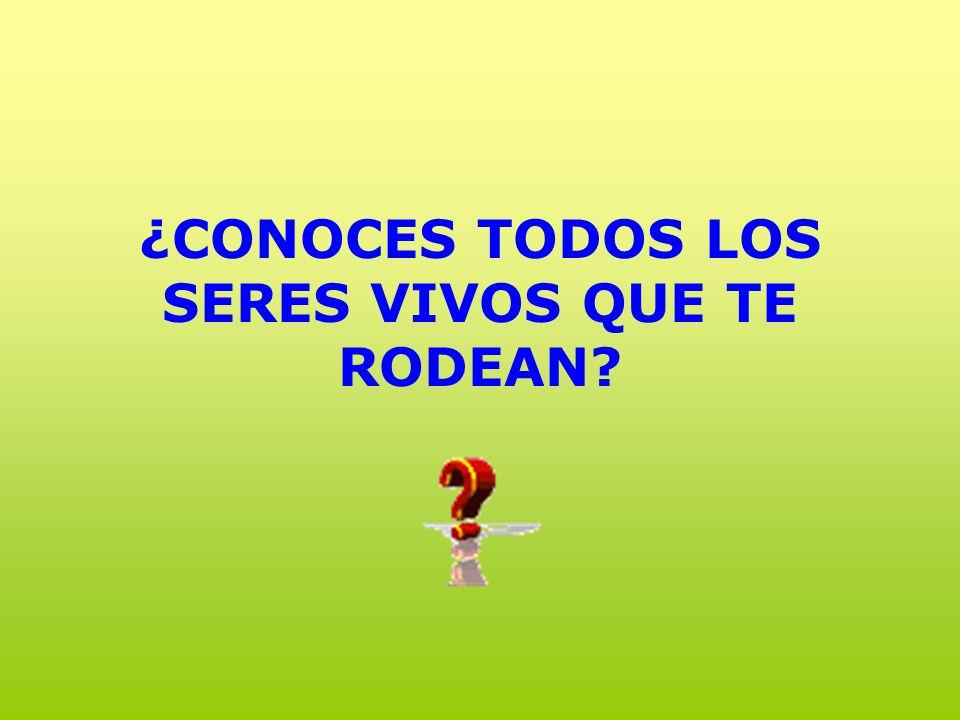 ¿CONOCES TODOS LOS SERES VIVOS QUE TE RODEAN