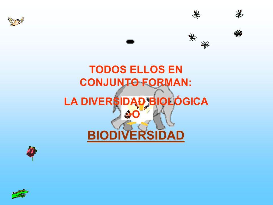 TODOS ELLOS EN CONJUNTO FORMAN: LA DIVERSIDAD BIOLÓGICA O
