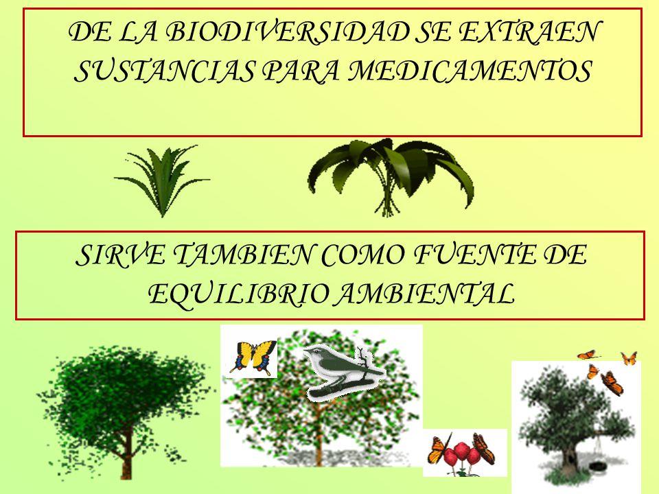 DE LA BIODIVERSIDAD SE EXTRAEN SUSTANCIAS PARA MEDICAMENTOS