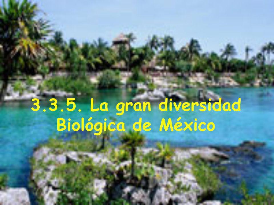 3.3.5. La gran diversidad Biológica de México