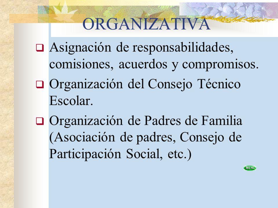 ORGANIZATIVA Asignación de responsabilidades, comisiones, acuerdos y compromisos. Organización del Consejo Técnico Escolar.