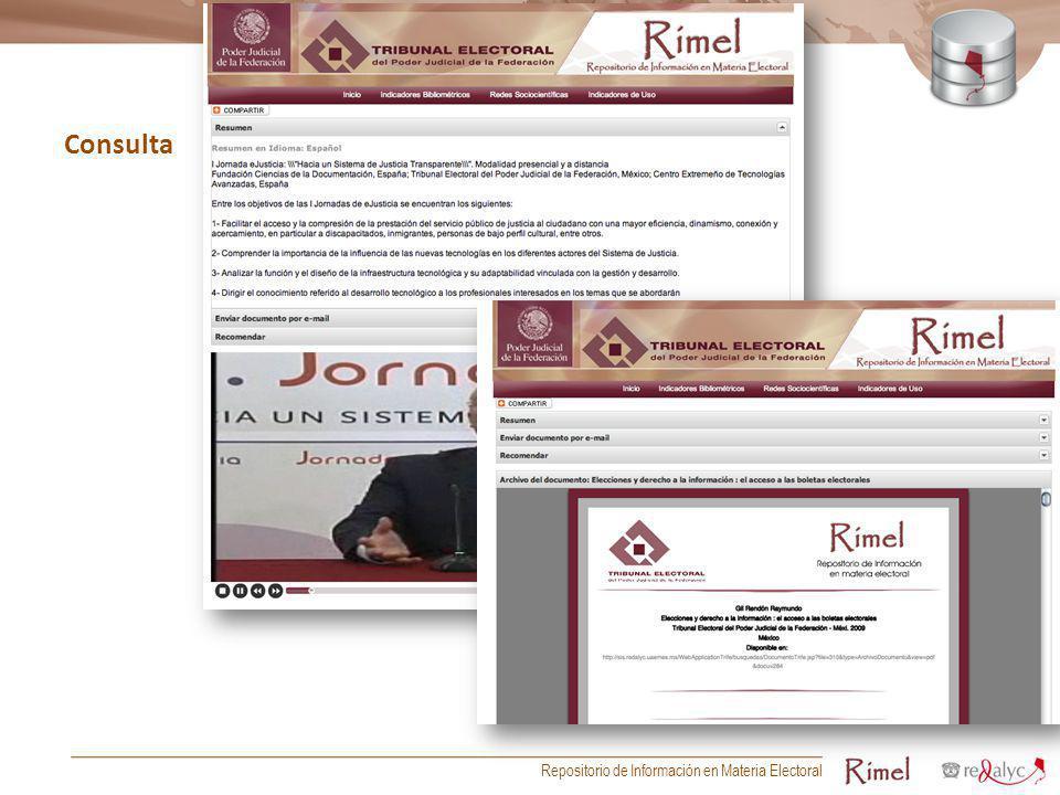 Consulta Repositorio de Información en Materia Electoral