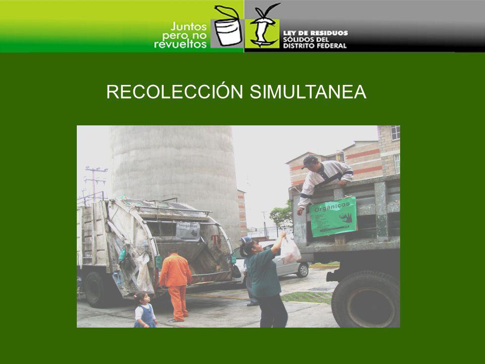 RECOLECCIÓN SIMULTANEA