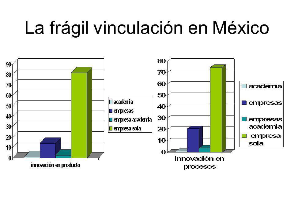 La frágil vinculación en México