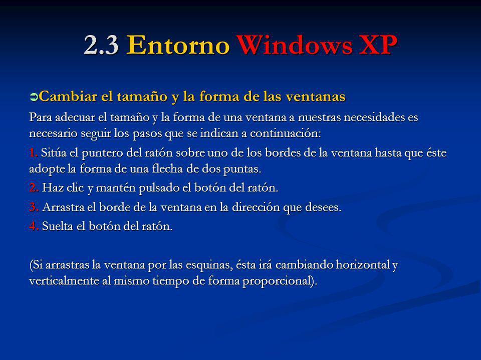 2.3 Entorno Windows XP Cambiar el tamaño y la forma de las ventanas