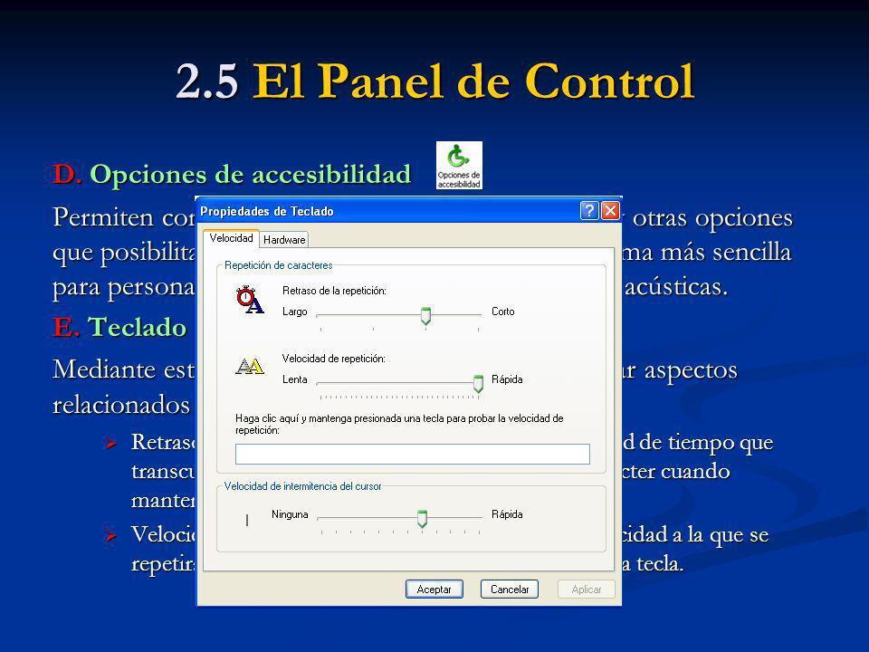 2.5 El Panel de Control D. Opciones de accesibilidad