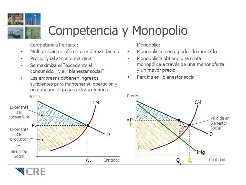 Competencia y Monopolio