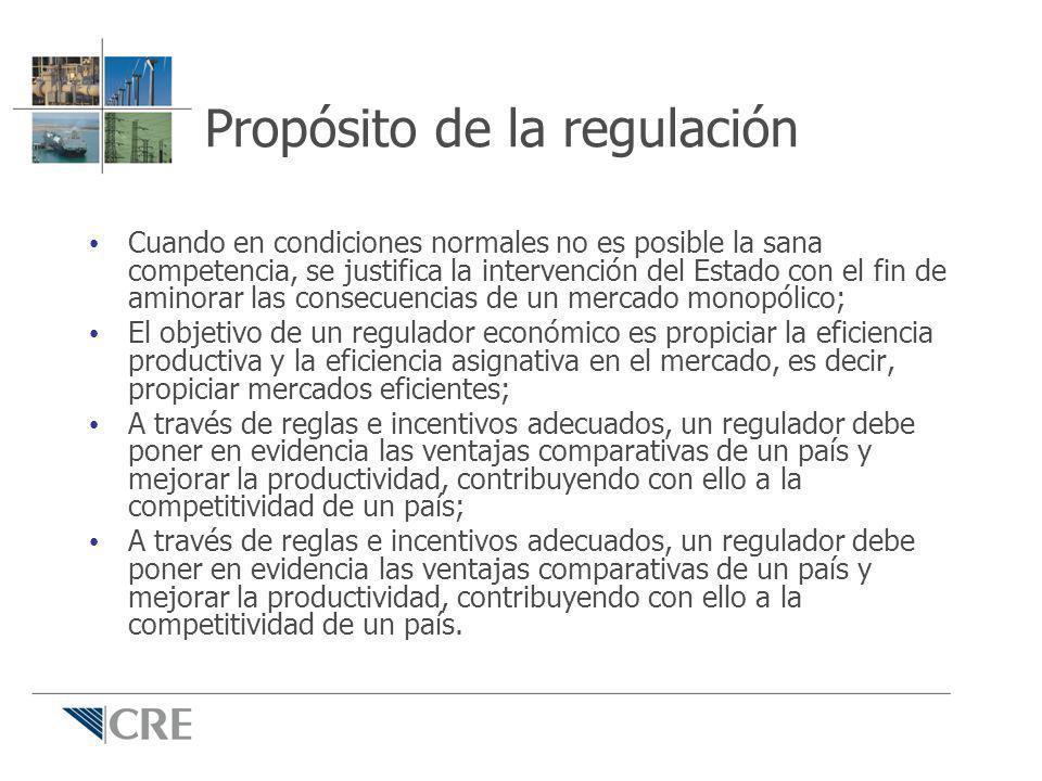 Propósito de la regulación