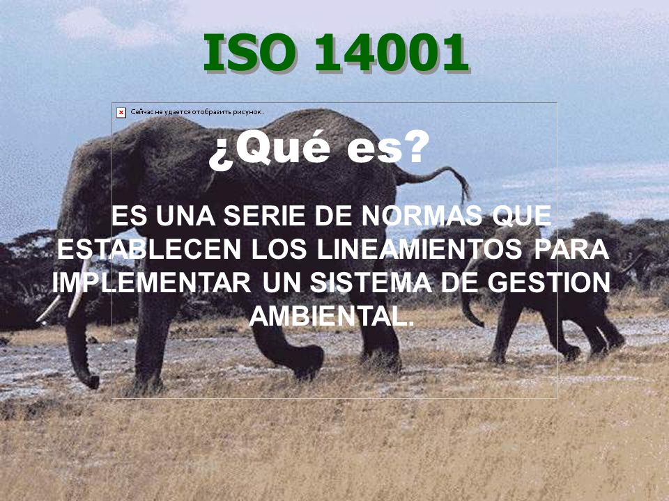 ISO 14001 ¿Qué es.