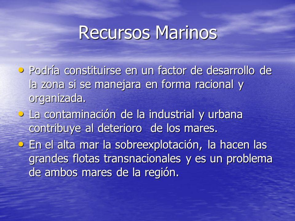 Recursos MarinosPodría constituirse en un factor de desarrollo de la zona si se manejara en forma racional y organizada.