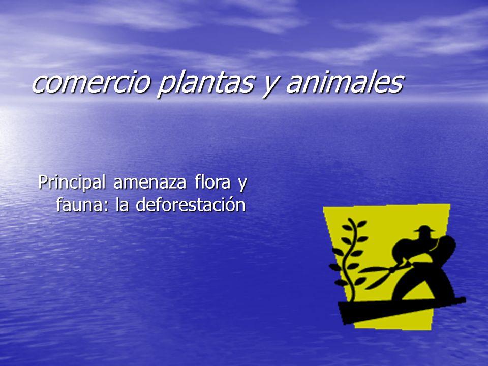 comercio plantas y animales