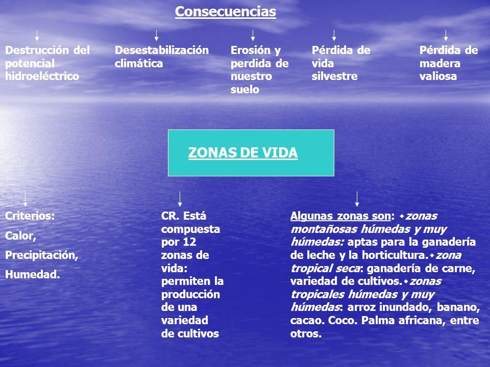 Consecuencias ZONAS DE VIDA Destrucción del potencial hidroeléctrico