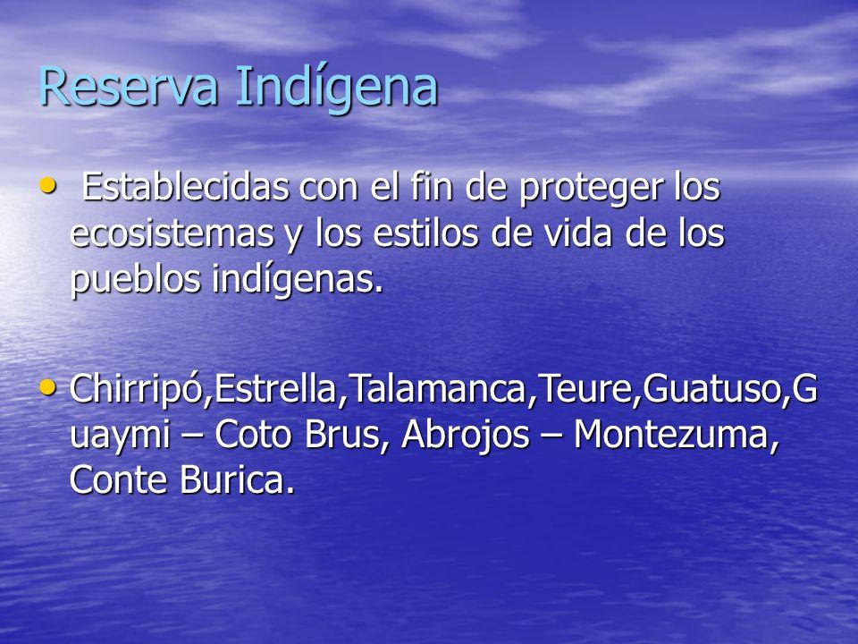 Reserva IndígenaEstablecidas con el fin de proteger los ecosistemas y los estilos de vida de los pueblos indígenas.
