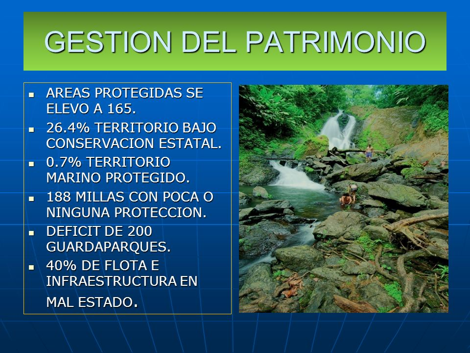 GESTION DEL PATRIMONIO