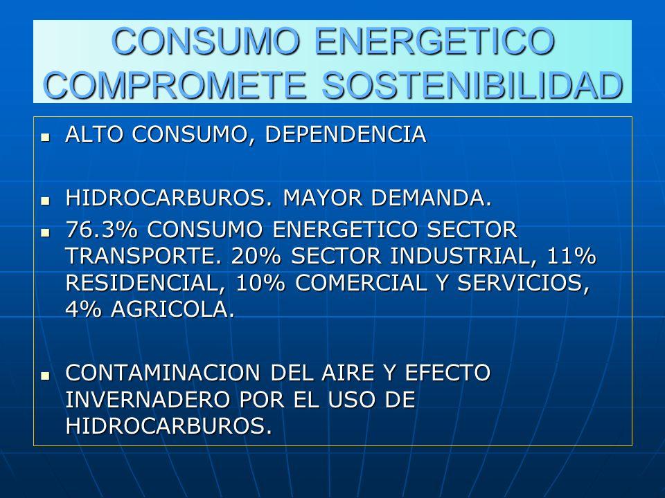 CONSUMO ENERGETICO COMPROMETE SOSTENIBILIDAD