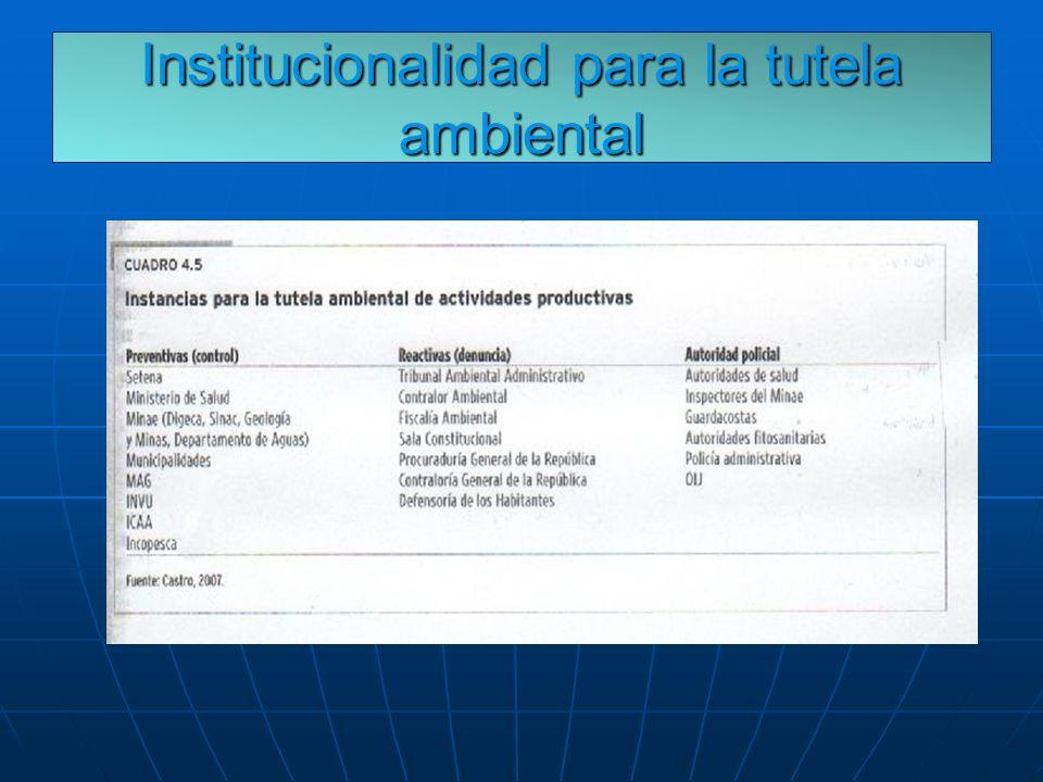Institucionalidad para la tutela ambiental