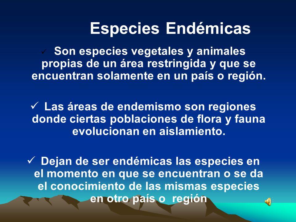 Especies Endémicas Son especies vegetales y animales propias de un área restringida y que se encuentran solamente en un país o región.