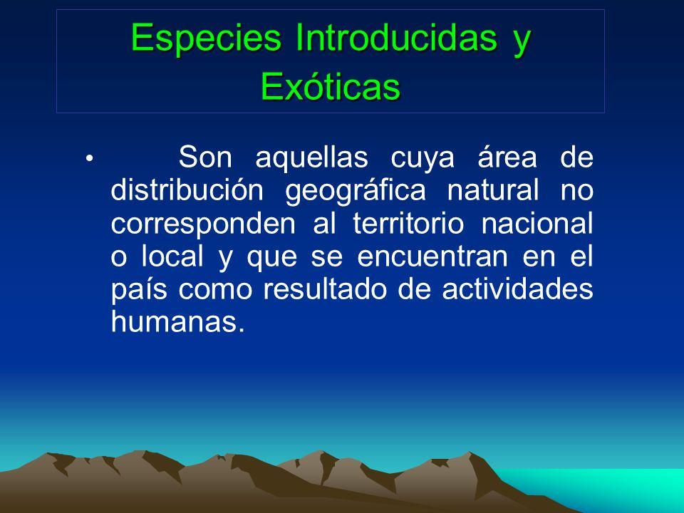 Especies Introducidas y Exóticas