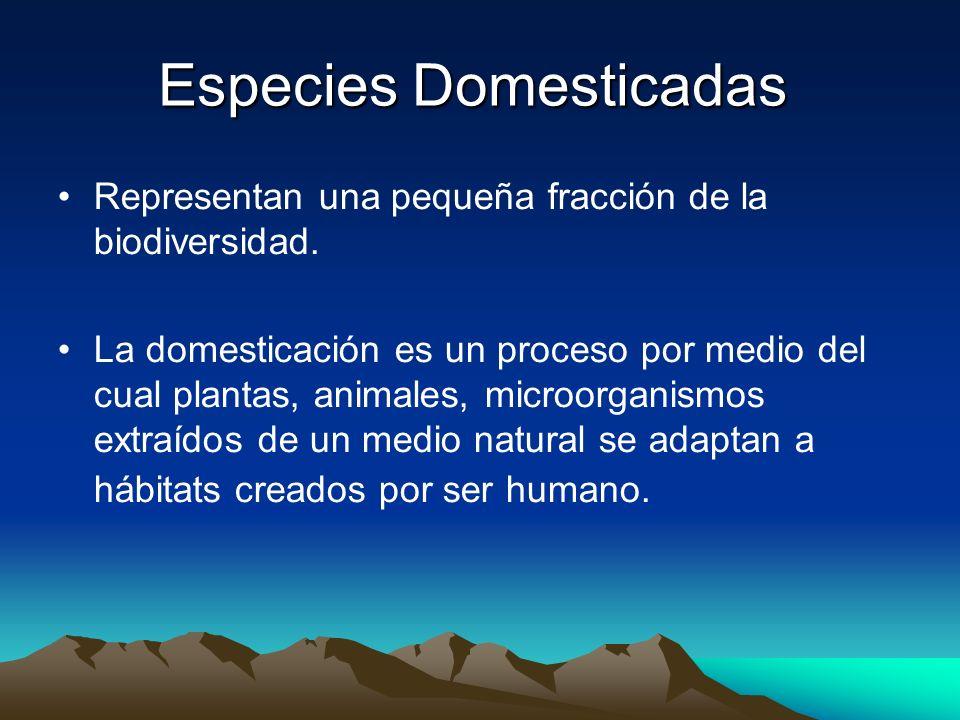 Especies Domesticadas
