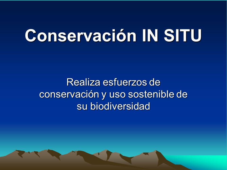 Realiza esfuerzos de conservación y uso sostenible de su biodiversidad