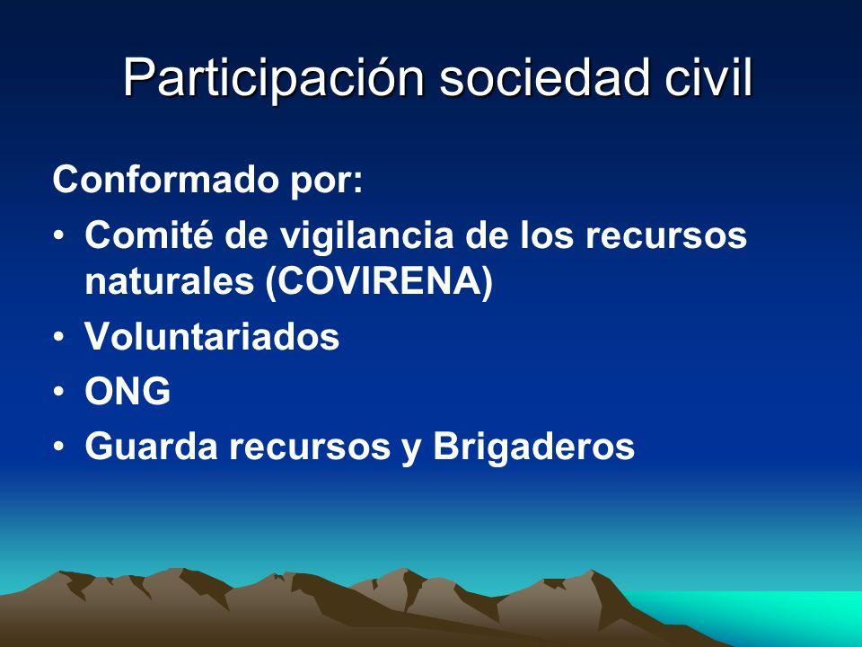 Participación sociedad civil