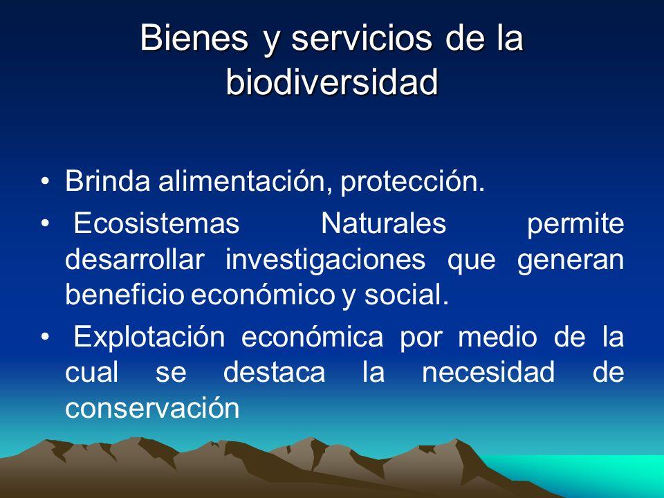 Bienes y servicios de la biodiversidad