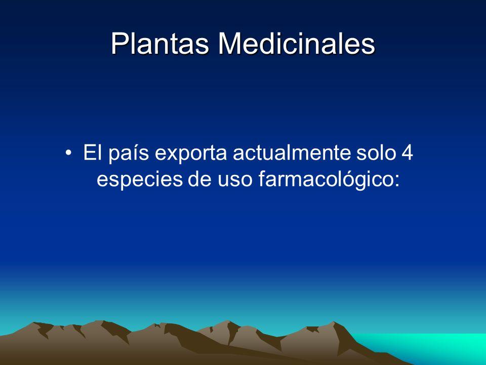 El país exporta actualmente solo 4 especies de uso farmacológico: