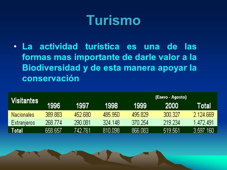 Turismo La actividad turística es una de las formas mas importante de darle valor a la Biodiversidad y de esta manera apoyar la conservación.