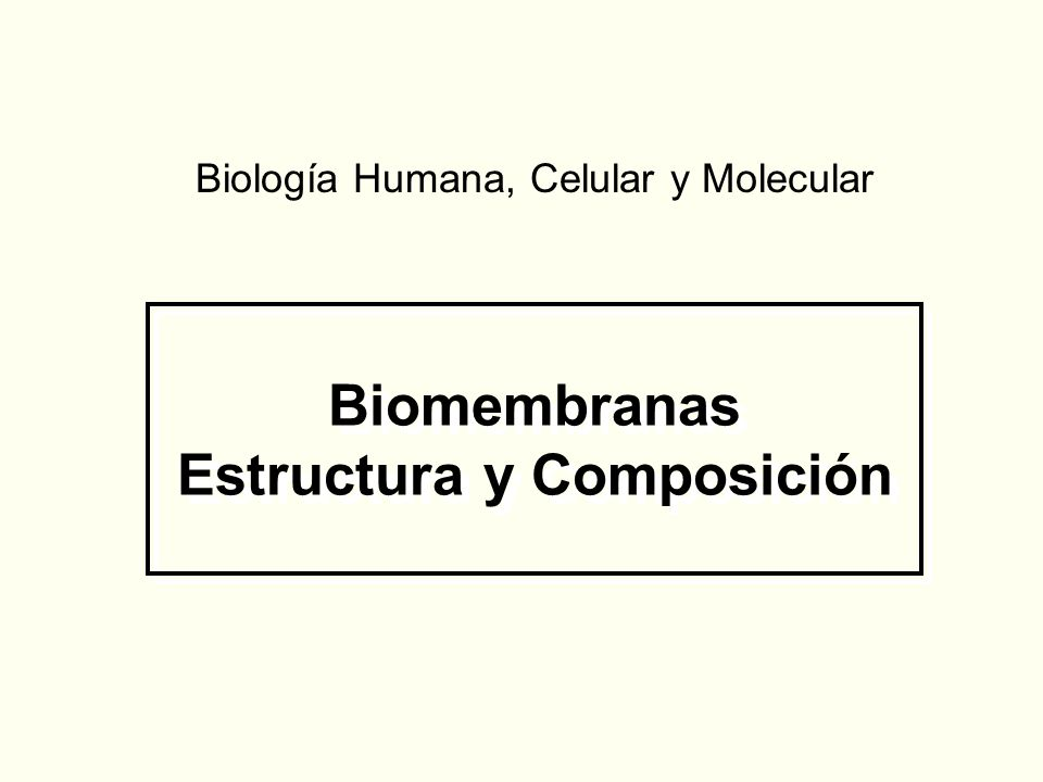 Biomembranas Estructura y Composición