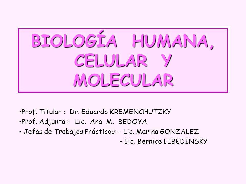 BIOLOGÍA HUMANA, CELULAR Y MOLECULAR