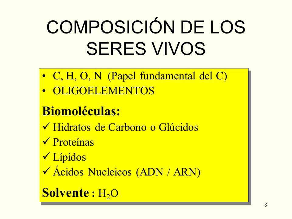 COMPOSICIÓN DE LOS SERES VIVOS