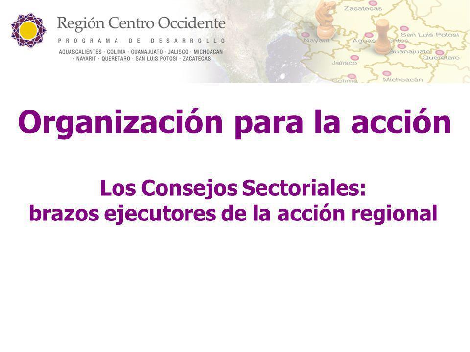 Organización para la acción