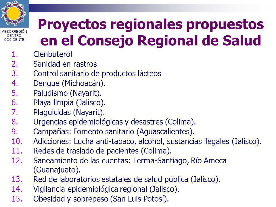 Proyectos regionales propuestos en el Consejo Regional de Salud