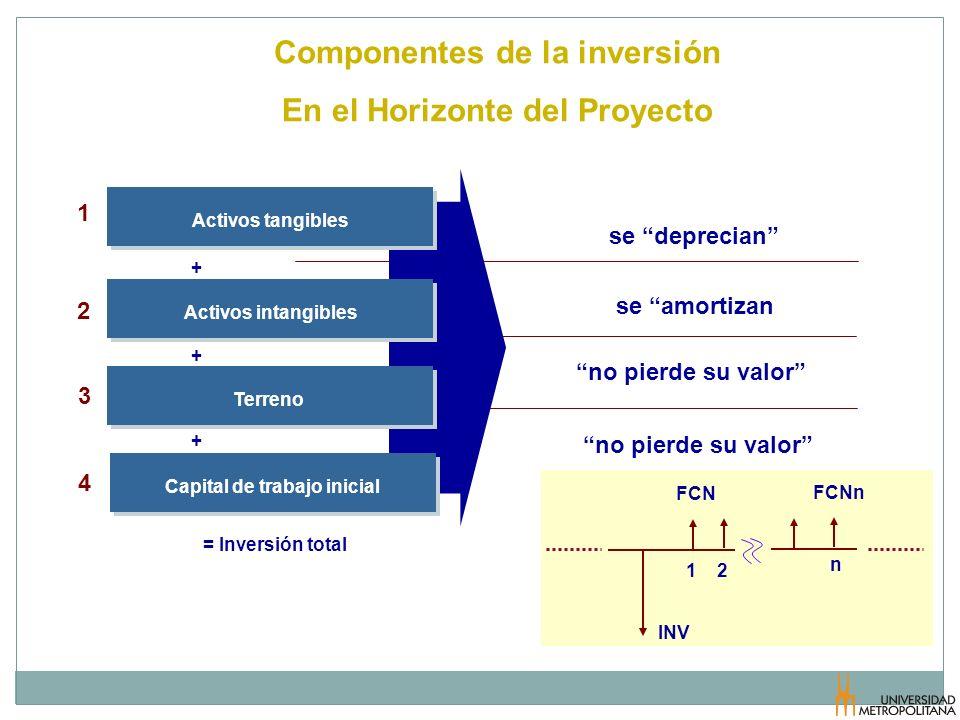 Componentes de la inversión En el Horizonte del Proyecto