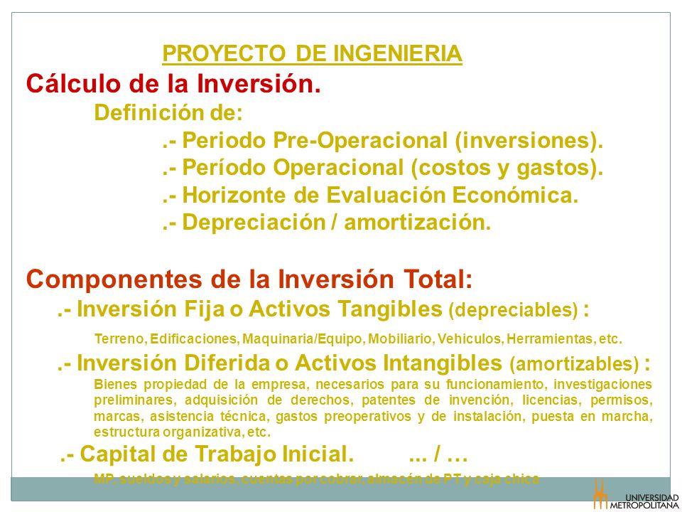 Cálculo de la Inversión.