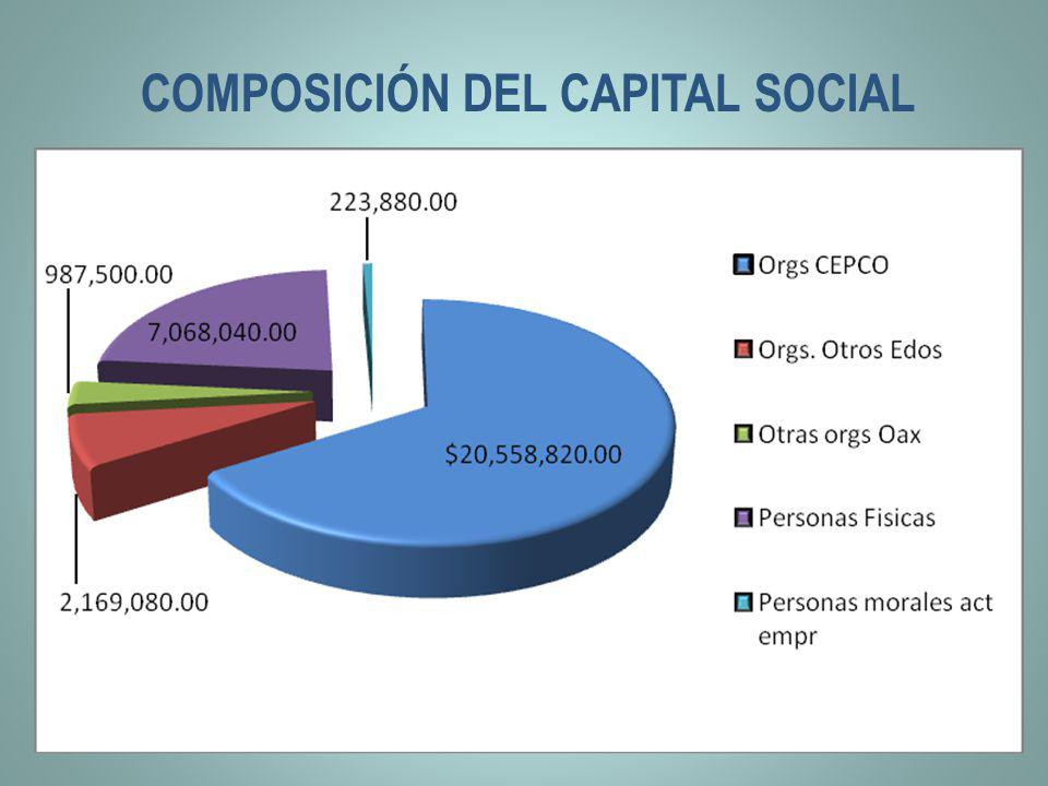 COMPOSICIÓN DEL CAPITAL SOCIAL