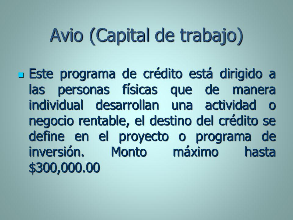 Avio (Capital de trabajo)