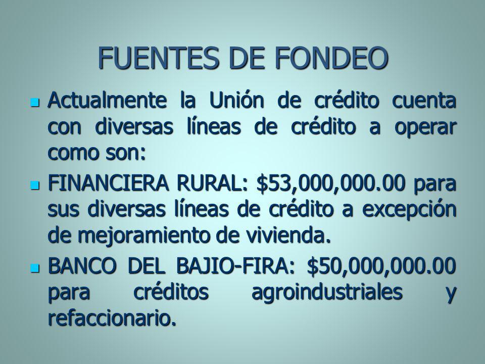 FUENTES DE FONDEO Actualmente la Unión de crédito cuenta con diversas líneas de crédito a operar como son: