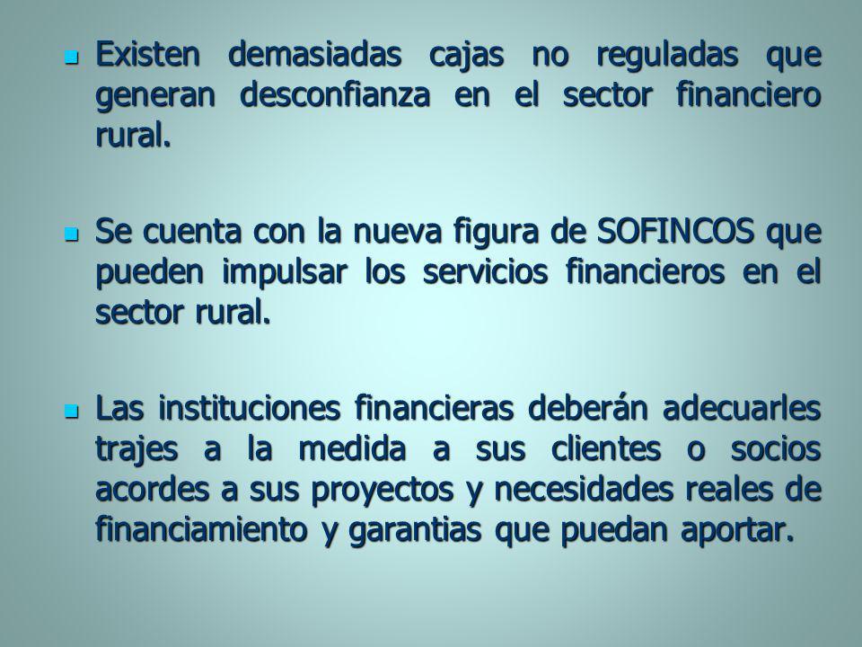 Existen demasiadas cajas no reguladas que generan desconfianza en el sector financiero rural.