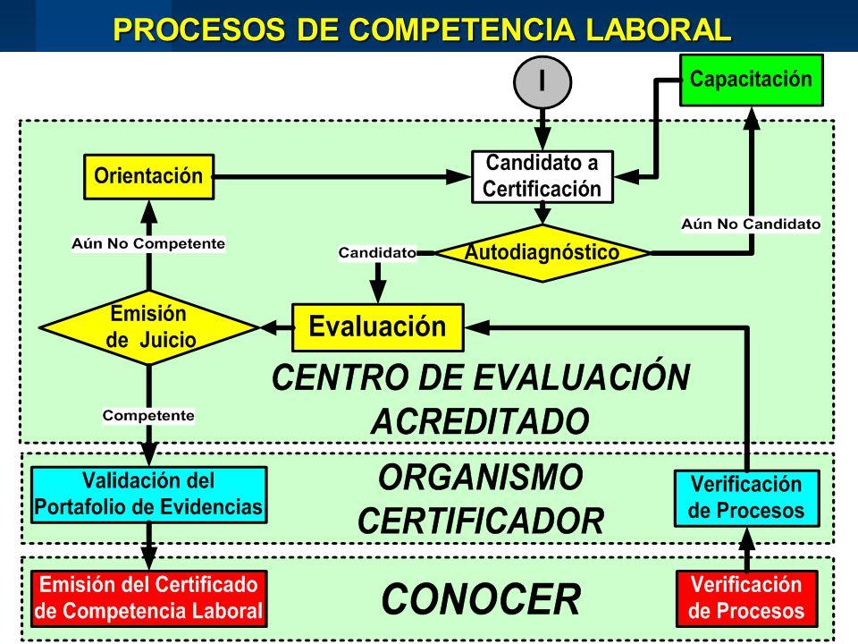 PROCESOS DE COMPETENCIA LABORAL
