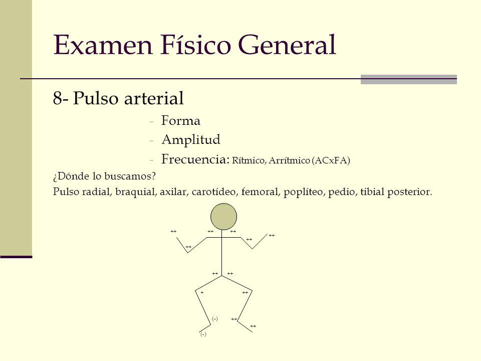 Examen Físico General 8- Pulso arterial Forma Amplitud