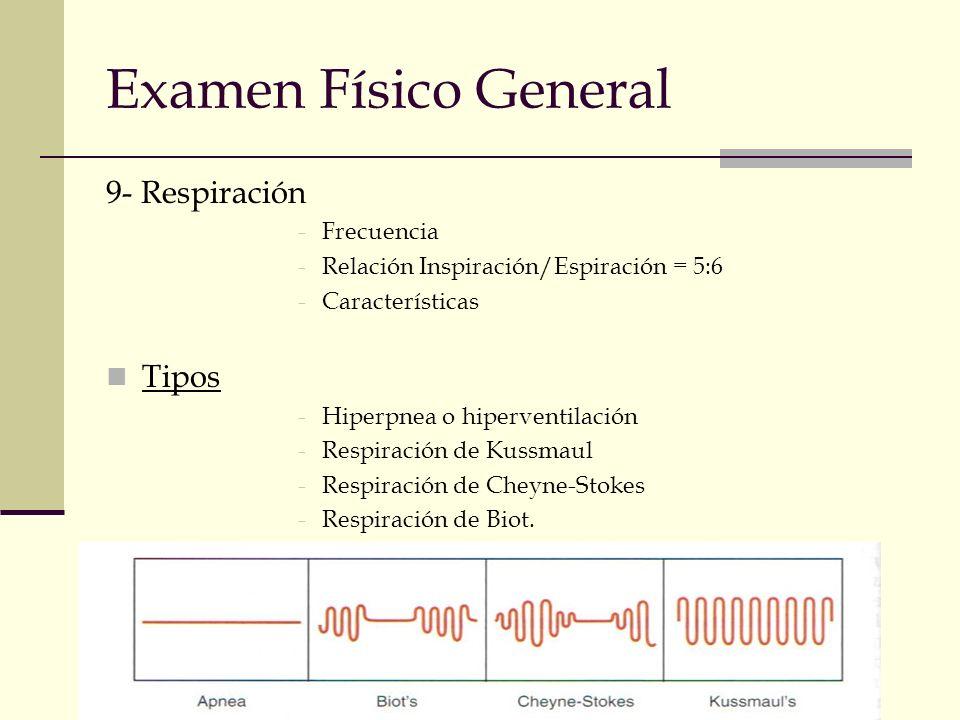 Examen Físico General 9- Respiración Tipos Frecuencia