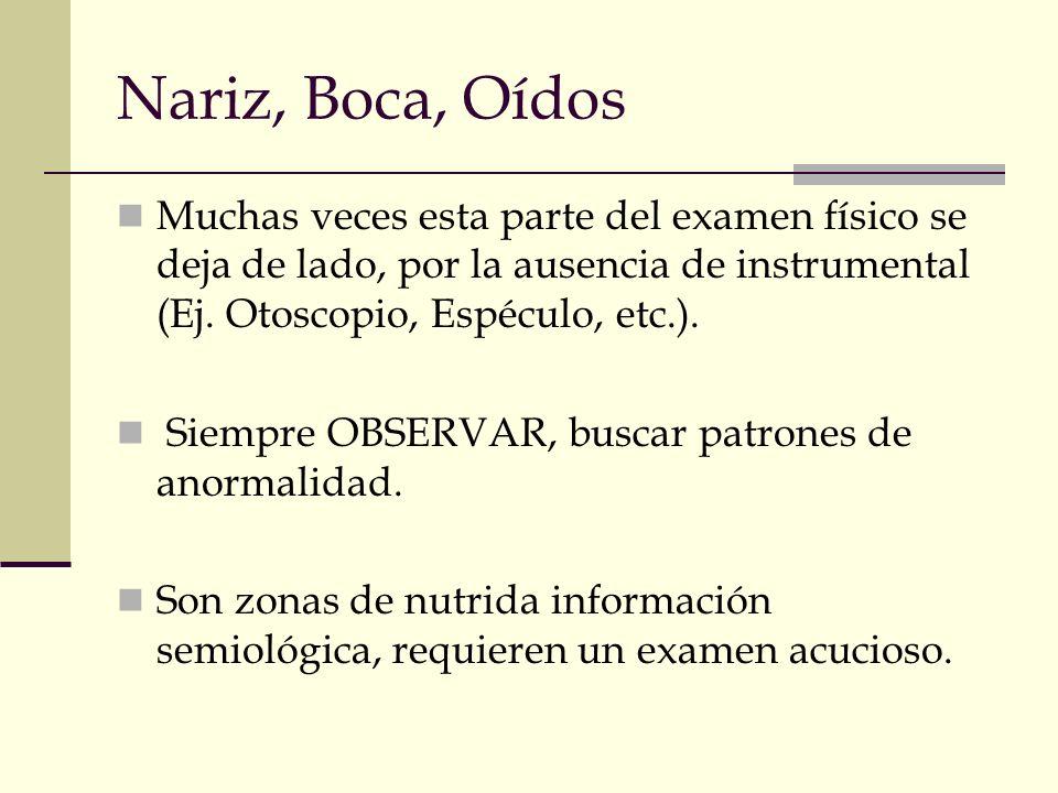 Nariz, Boca, Oídos Muchas veces esta parte del examen físico se deja de lado, por la ausencia de instrumental (Ej. Otoscopio, Espéculo, etc.).
