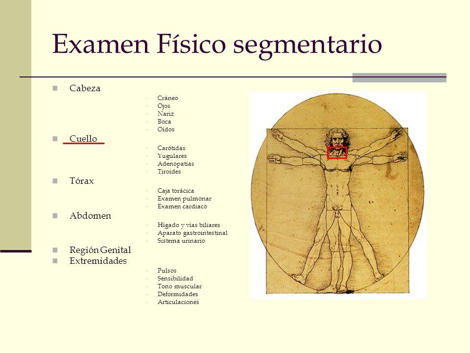 Examen Físico segmentario