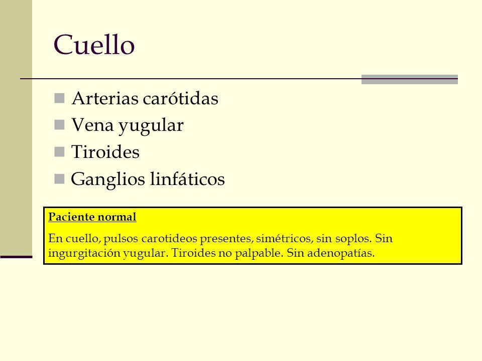 Cuello Arterias carótidas Vena yugular Tiroides Ganglios linfáticos