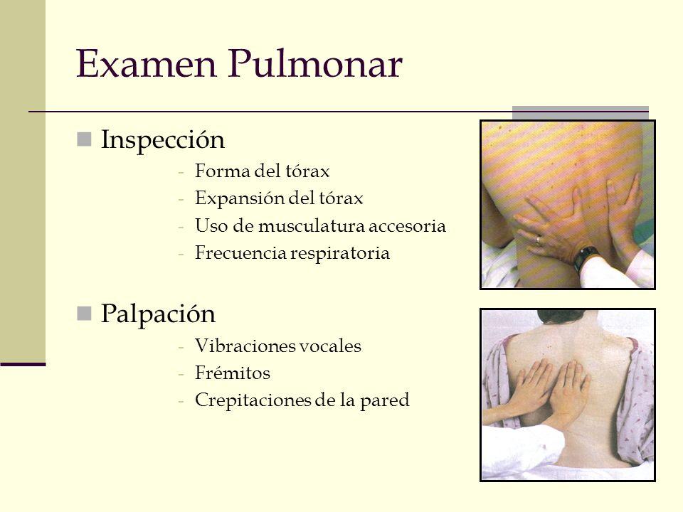 Examen Pulmonar Inspección Palpación Forma del tórax
