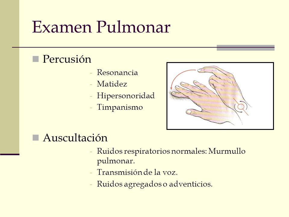 Examen Pulmonar Percusión Auscultación Resonancia Matidez