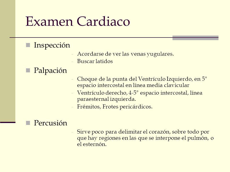 Examen Cardiaco Inspección Palpación Percusión