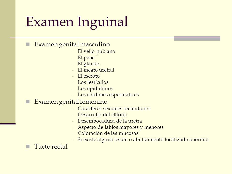 Examen Inguinal Examen genital masculino Examen genital femenino