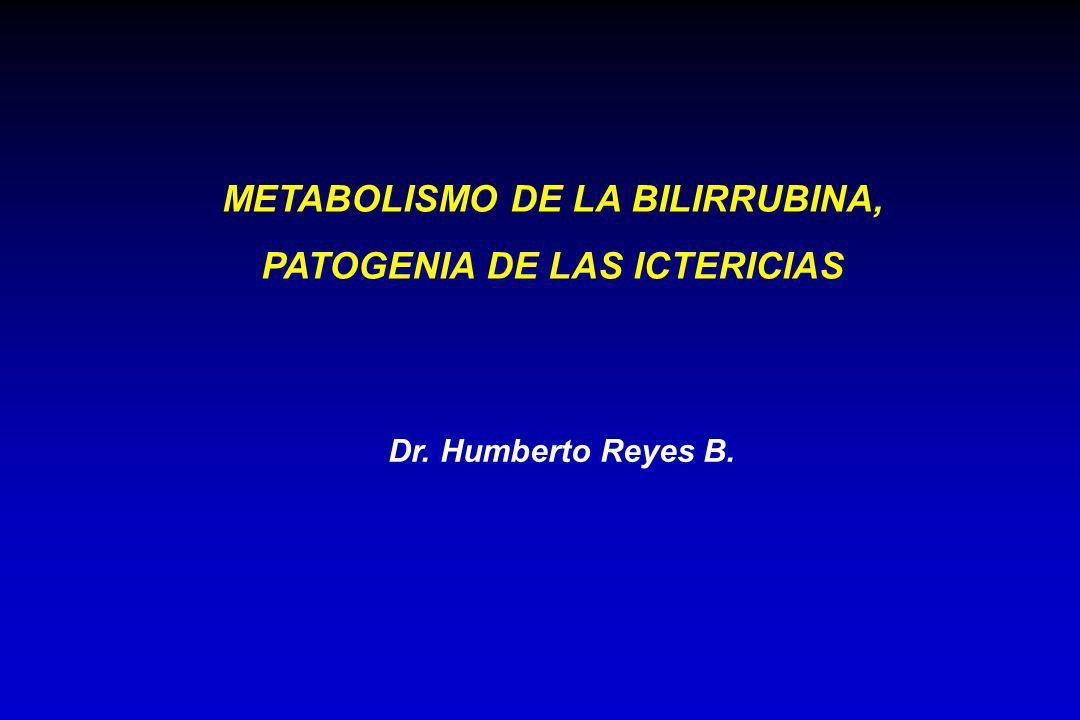 METABOLISMO DE LA BILIRRUBINA, PATOGENIA DE LAS ICTERICIAS